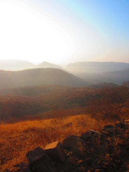 sunrise in Ranthambore National Park, Rajasthan, Dec.29, 2012