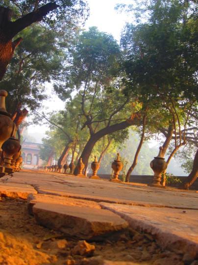 temple road in Deo Bagh, Gwalior, Madhya Pradesh, Jan. 4, 2012