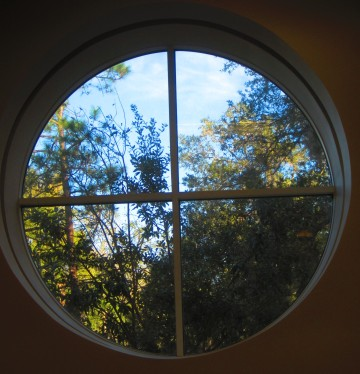 view from the Emerson Alumni Hall auditorium,  UF, Gainesville, Florida, Jan. 19, 2013