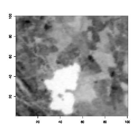 Lake Menteith Landsat image, as printed in Bayesian Core (2007)