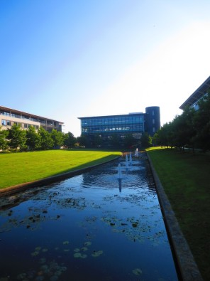 the pond in front of the Zeeman building, University of Warwick, July 01, 2014