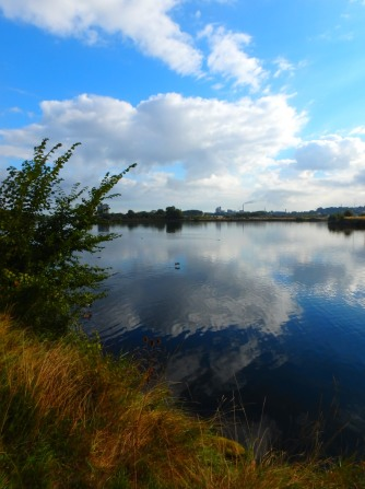 along the canal from Caen to Ouistreham, Oct 09, 2016